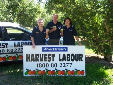 Harvest Labour Staff, Vicki, Shane and Emma in front Harvest Labour sign in an orchard.